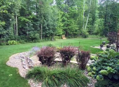 Wooded_Backyard